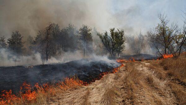 Тушение природного пожара в Волгоградской области, архивное фото