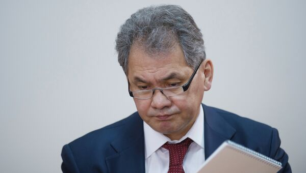 Сергей Шойгу. Архив