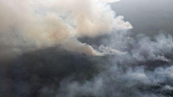 Лесные пожары в Томской области