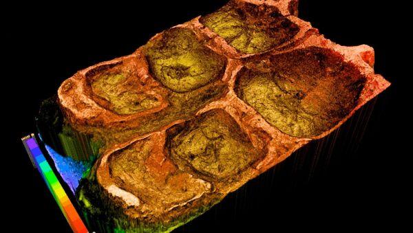 Компьютерная модель зубов эдмонтозавра
