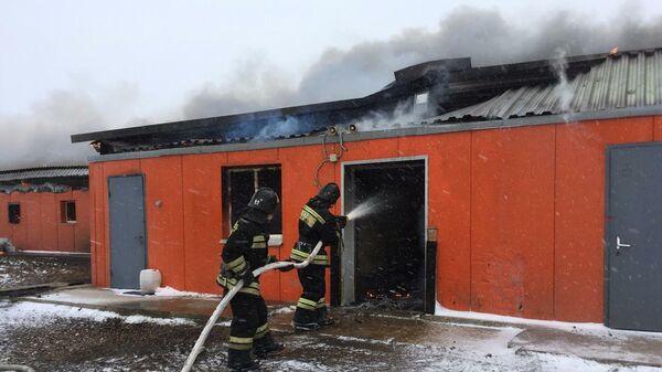 Пожар на подмосковной свиноферме. 6 февраля 2020