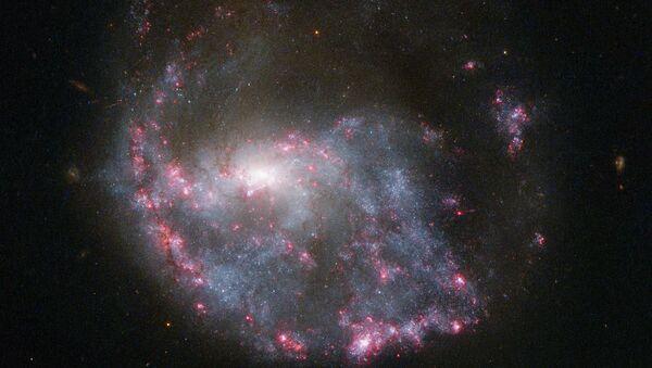 """Кольцеобразная галактика NGC 922 в созвездии Печи. Снимок телескопа """"Хаббл"""""""