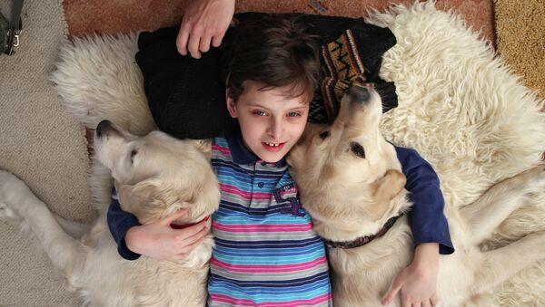 Пет-терапия: какие животные лечат людей?