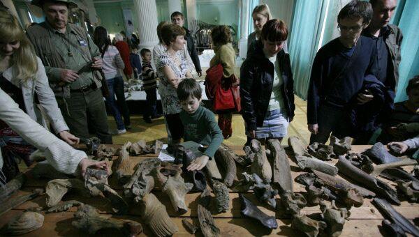 Посетители Новосибирского государственного краеведческого музея во время акции Ночь в музее
