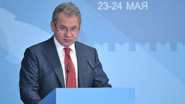 Министр обороны РФ Сергей Шойгу выступает на конференции по европейской безопасности в Москве