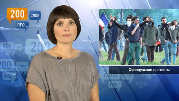 200 слов про французские протесты