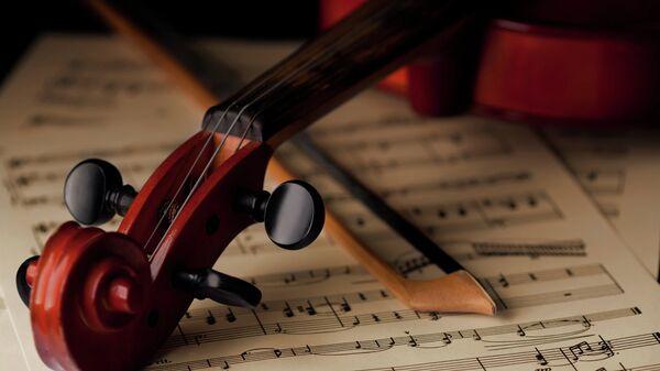 Скрипка, архивное фото.