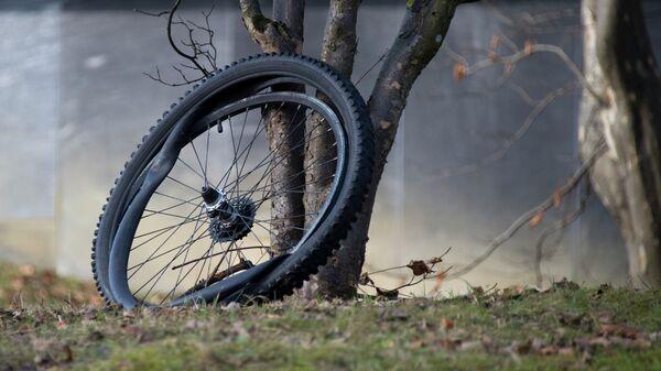 Велосипедное колесо. Архивное фото