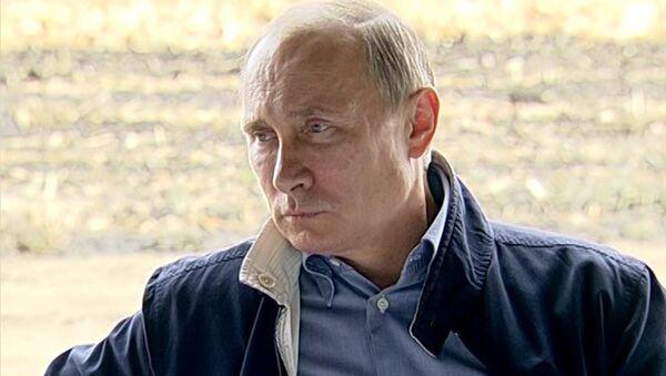 Путин попросил убрать камеры, чтобы поесть борща с кубанскими комбайнерами