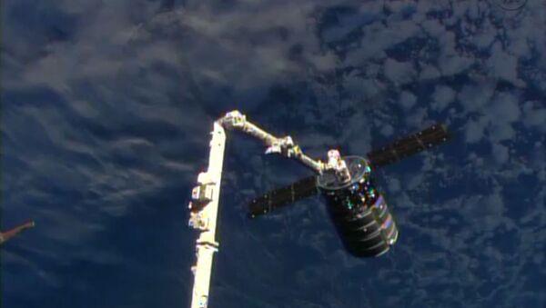 Манипулятор захватил корабль Cygnus