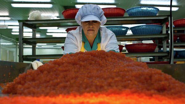 Рыбоперерабатывающий завод Ясный ЗАО Гидрострой в поселке Китовый на острове Итуруп. Архивное фото