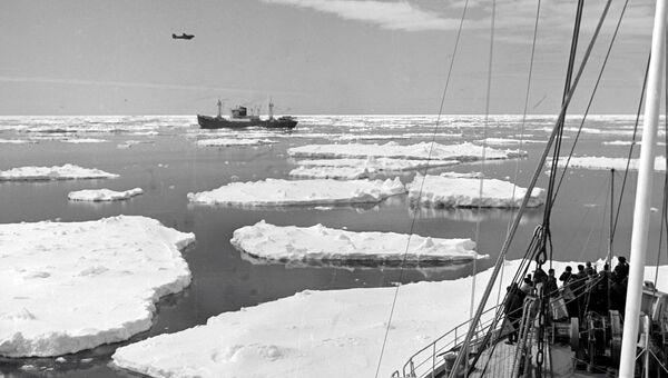 В Антарктиде. Архивное фото