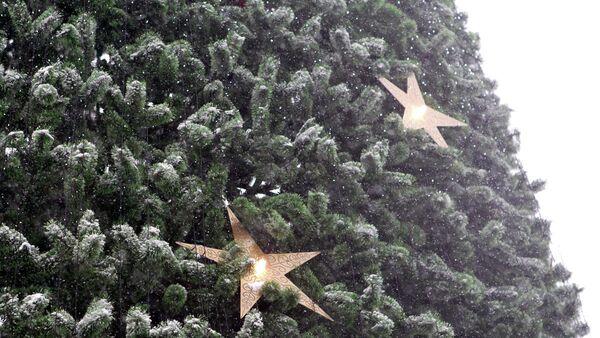 Новогодняя ель на Новособорной площади в Томске