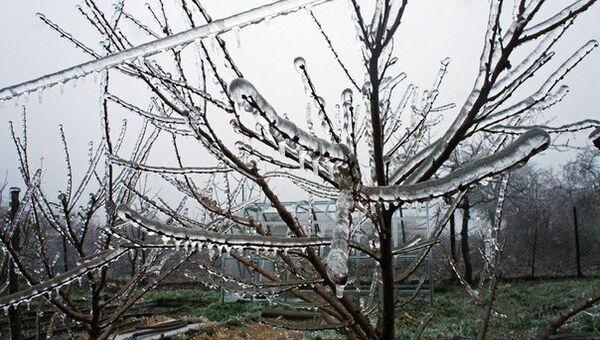 Ледяной дождь на Кубани