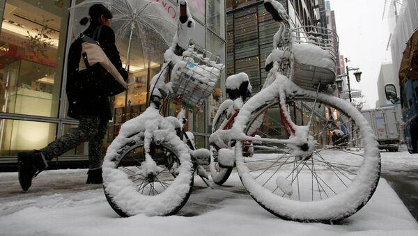 Последствие сильного снегопада в Токио