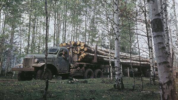 Руткинский леспромхоз