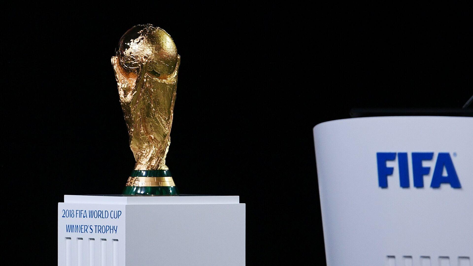 Кубок чемпионата мира по футболу - РИА Новости, 1920, 22.12.2020
