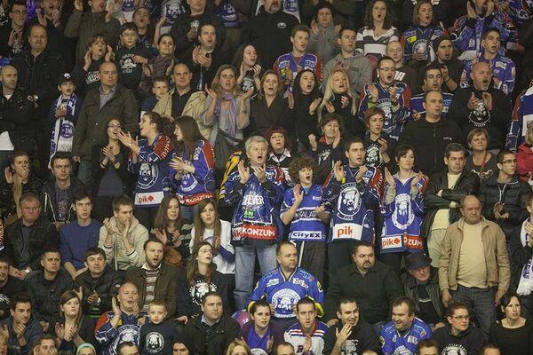 Болельщики хоккейного клуба Медвешчак (Загреб)