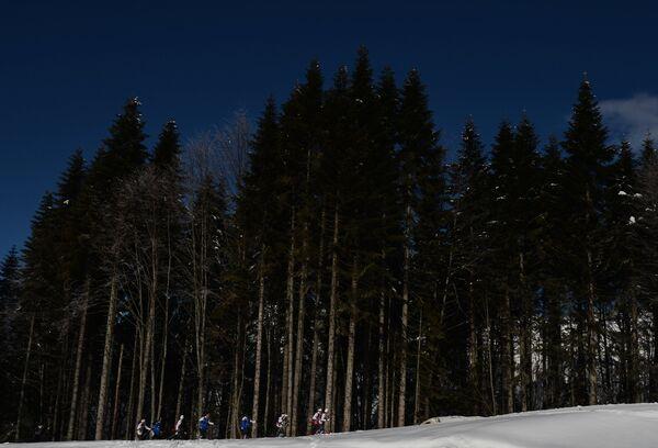 Олимпиада 2014. Лыжные гонки. Тренировки
