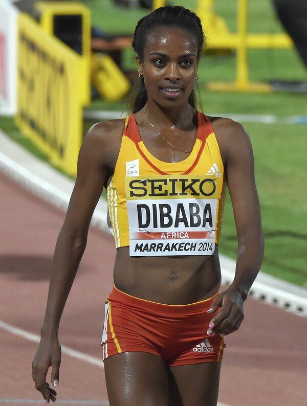 Гензебе Дибаба