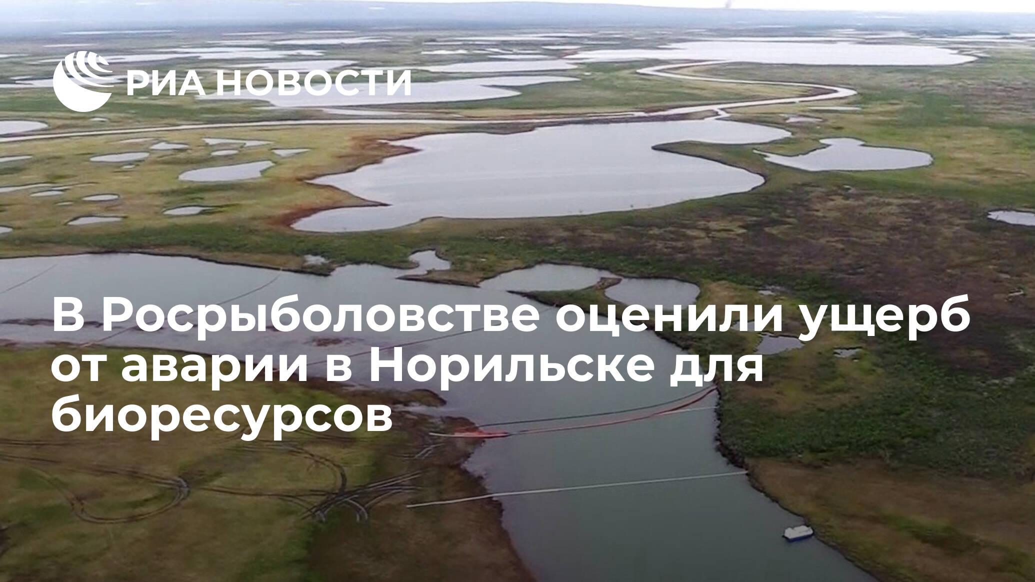 В Росрыболовстве оценили ущерб от аварии в Норильске для биоресурсов