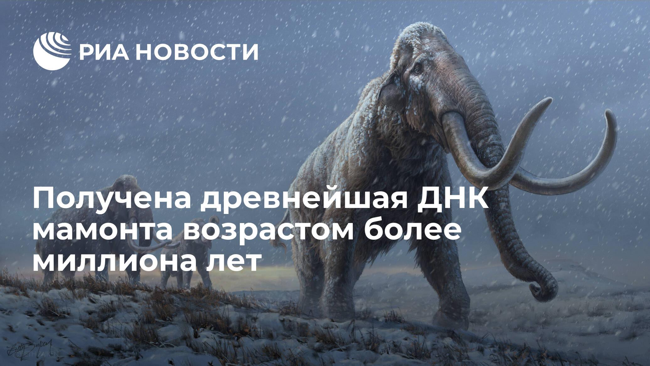 https://cdn25.img.ria.ru/images/sharing/article/1597883090.jpg?15978598811613577601