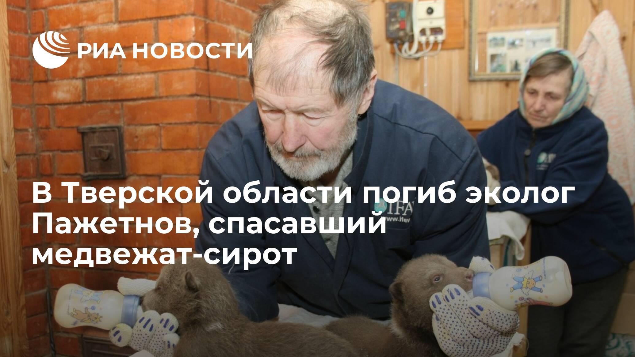 В Тверской области погиб эколог Пажетнов, спасавший медвежат-сирот